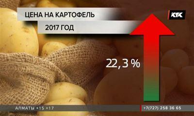 Аграрии Казахстана ожидают резкого увеличения цен накартофель