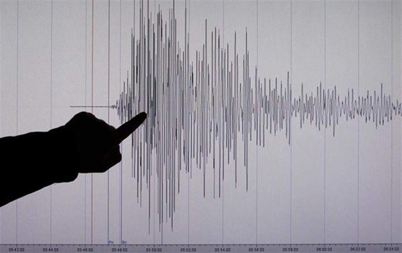На Камчатке зафиксировано землетрясение магнитудой 4,9