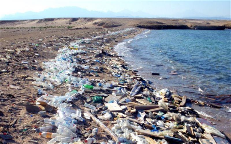 Сигаретные фильтры названы самым опасным загрязнителем Мирового океана