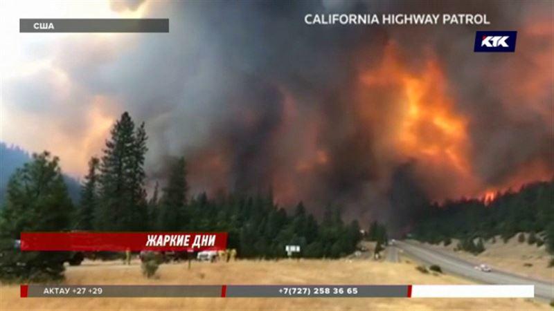1500 домов уничтожил лесной пожар