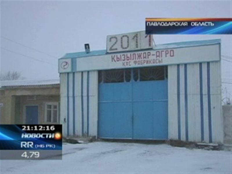 Ещё одна казахстанская птицефабрика на грани банкротства