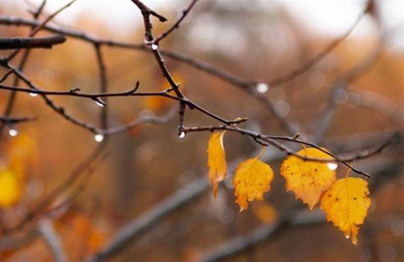 Синоптики сообщили прогноз погоды на ближайшие три дня