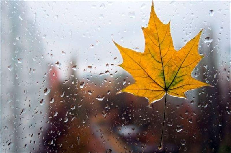 Дожди и понижение температуры прогнозируют синоптики в Казахстане