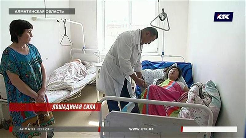 Из-за лошади на трассе под Алматы погибла девочка