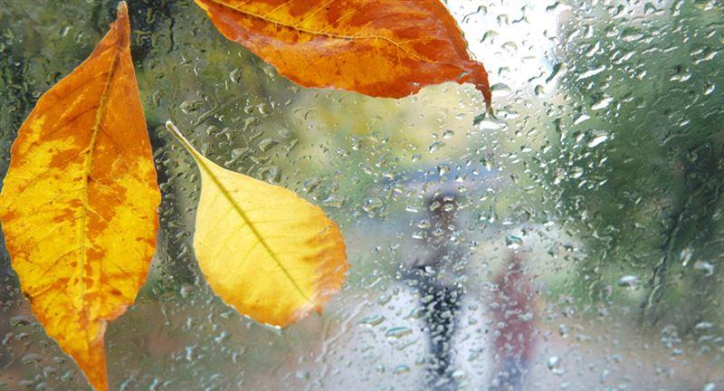 Дожди ожидаются на большей части Казахстана 21 сентября