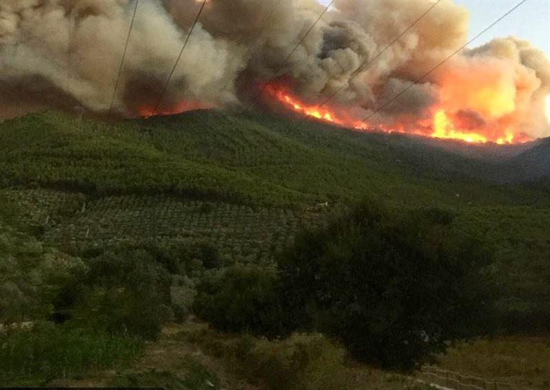 Сотни жителей Тосканы эвакуированы из-за сильного лесного пожара