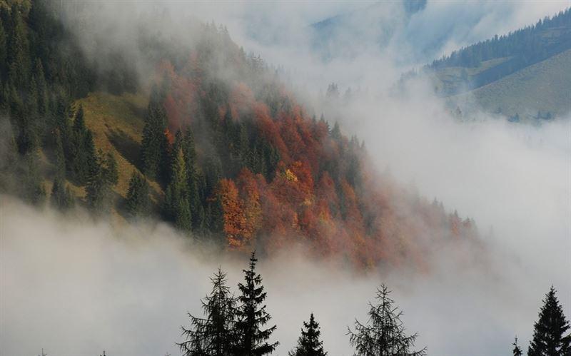 Какой будет погода в Казахстане 1 октября