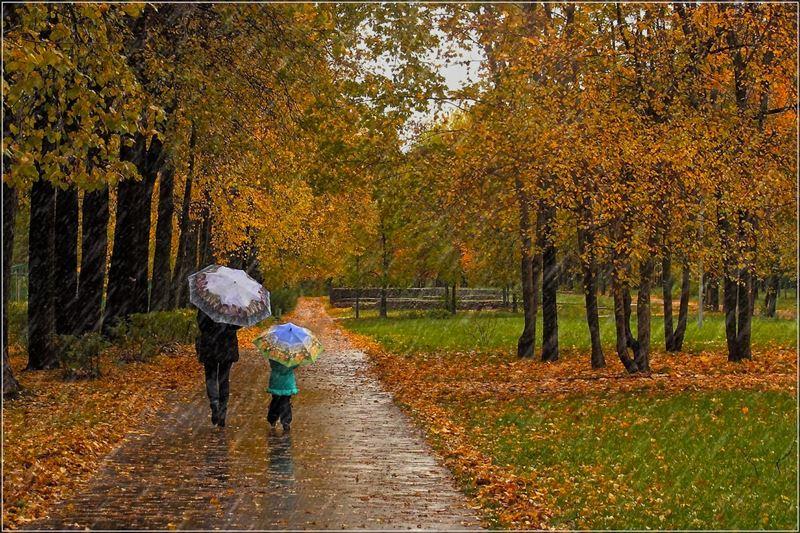 Дожди, туман и усиление ветра: прогноз погоды в Казахстане на 2 октября