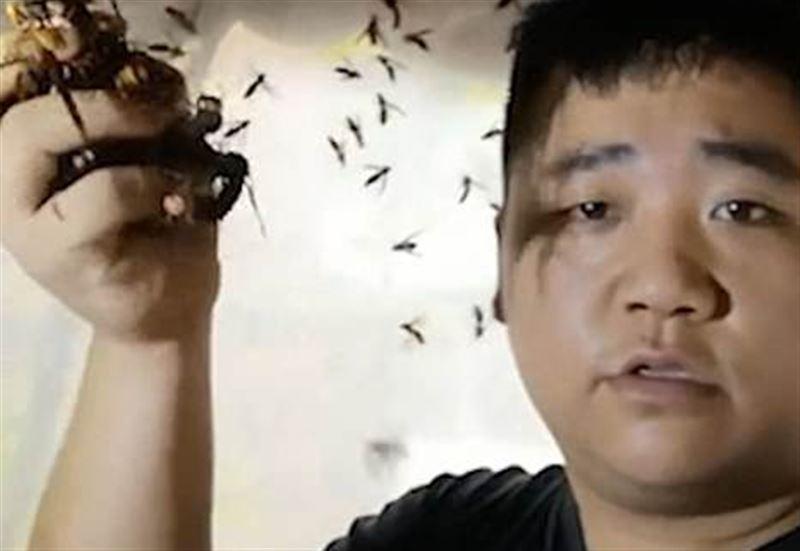 Мужчина снял на видео, как держит в руках шершней-убийц