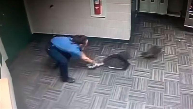 Задержание енота американской полицией рассмешило пользователей Сети