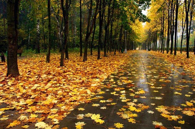 Прогноз погоды в Казахстане на 7 октября