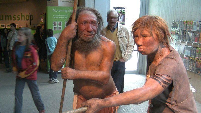 Ученые выяснили, чем современные люди обязаны неандертальцам