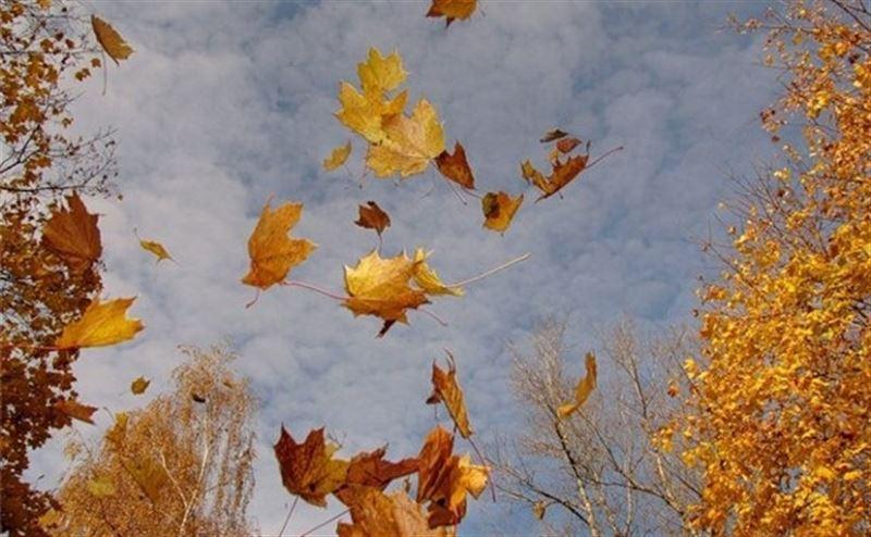 Прогноз погоды в Казахстане на 8 октября
