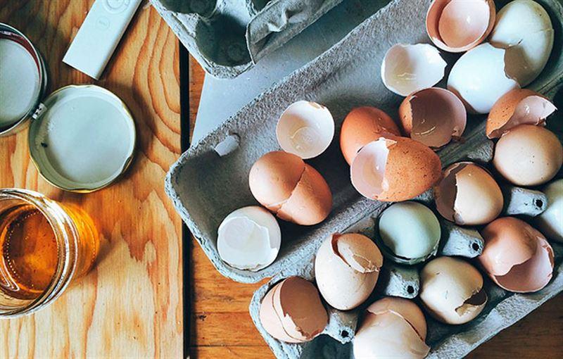 Учёные рассказали, сколько яиц в день можно есть