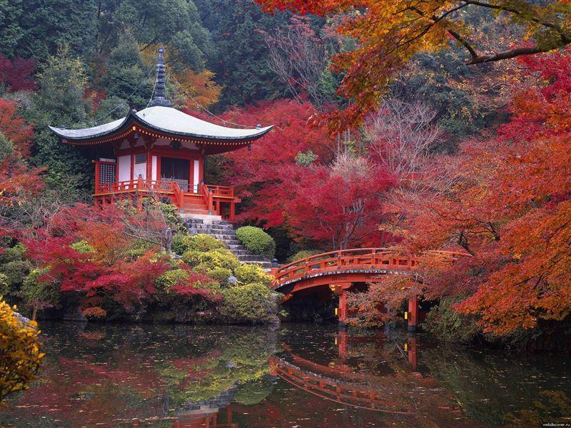 Фестиваль «Японская осень» пройдет в Алматы с 26 октября по 4 ноября