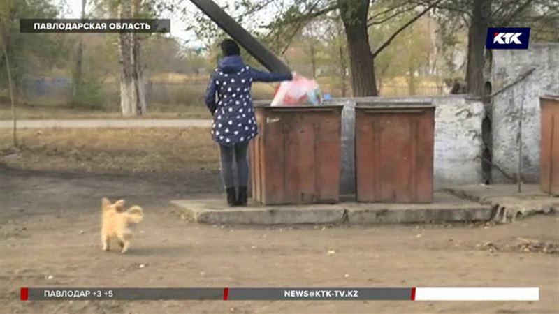 Павлодарская студентка выбросила новорождённого в мусорный бак
