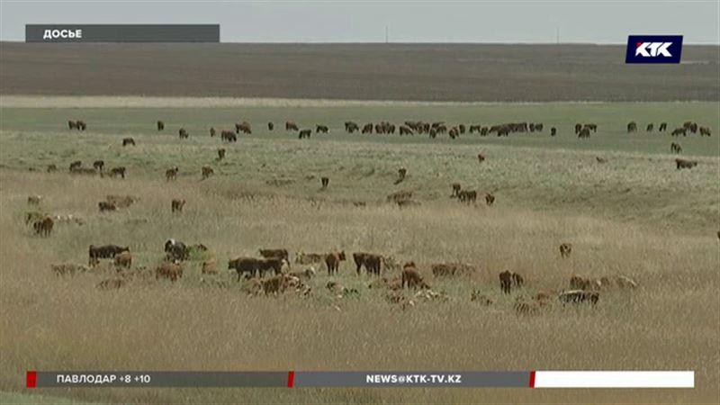 В Казахстане предложили изъять земли сельхозназначения из частной собственности