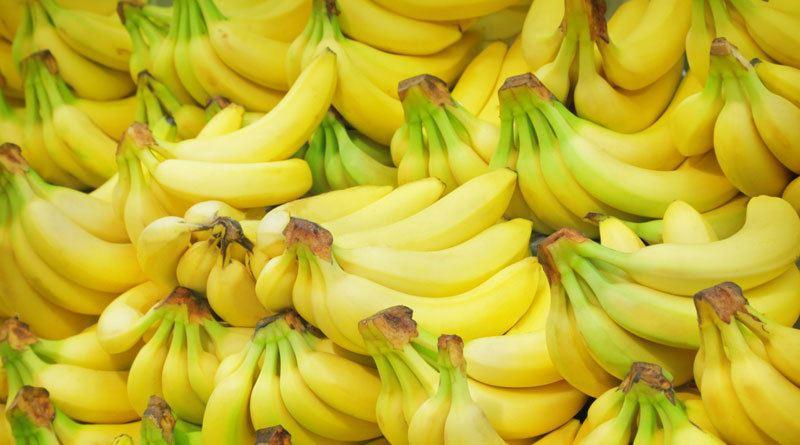 В Испании изъяли шесть тонн кокаина, спрятанного в бананах