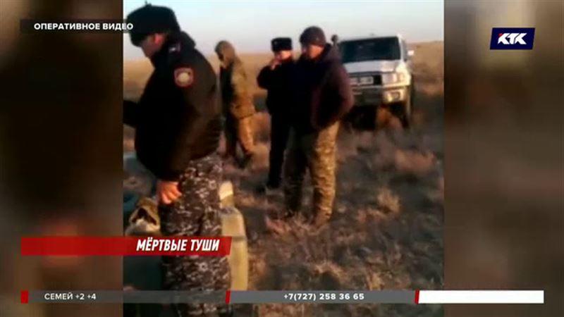 В карагандинских степях задержали убийц сайги