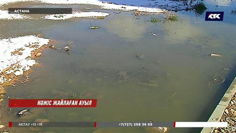 Астана тұрғындары нәжіс суынан тұншығып отыр