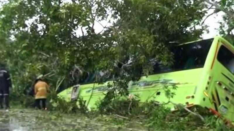 Автобус со школьниками врезался в дерево. Есть пострадавшие