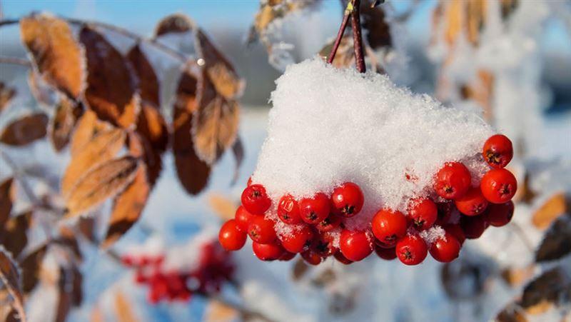 Прогноз погоды по Казахстану на вторник, 6 ноября