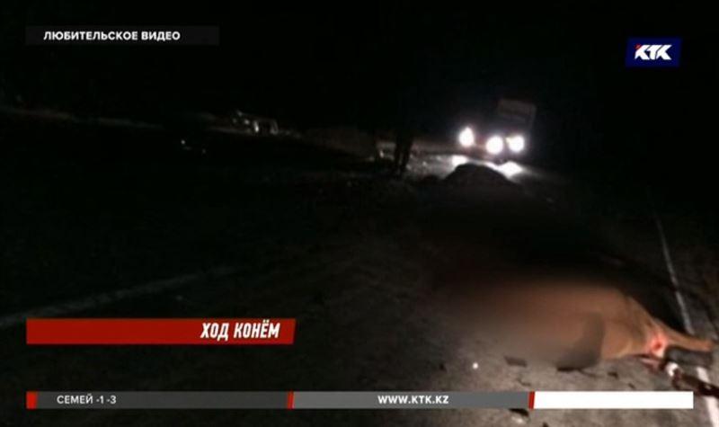 Минивэн на трассе в ЗКО столкнулся сразу c 6 лошадьми