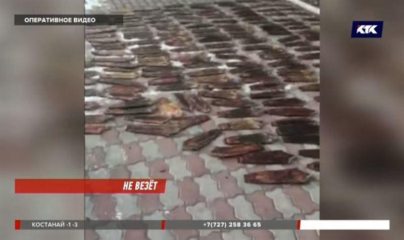 Триста шкурок ондатры изъяли полицейские в Алматинской области