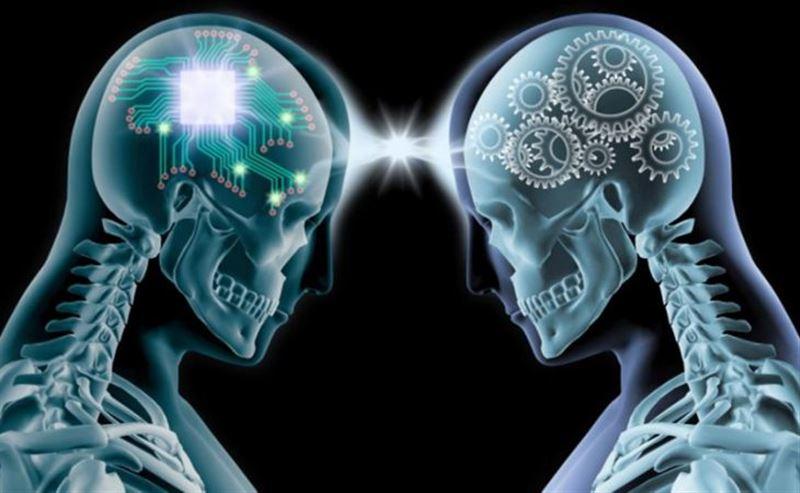 Учёные выяснили, как мозг человека запоминает и стирает информацию