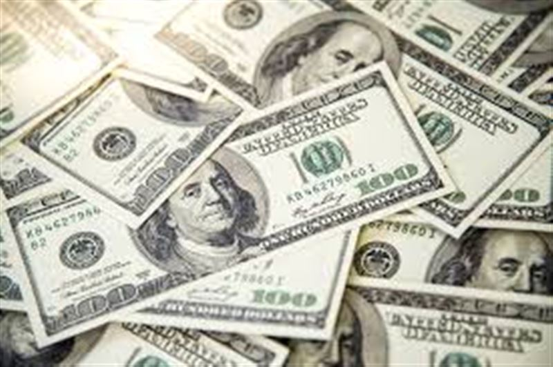 Қаңғыбас тауып алған 17 мың долларды қайырымдылыққа берді