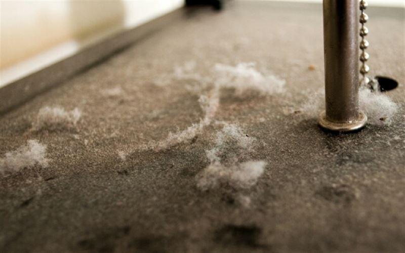 Ученые рассказали, чем опасна пыль
