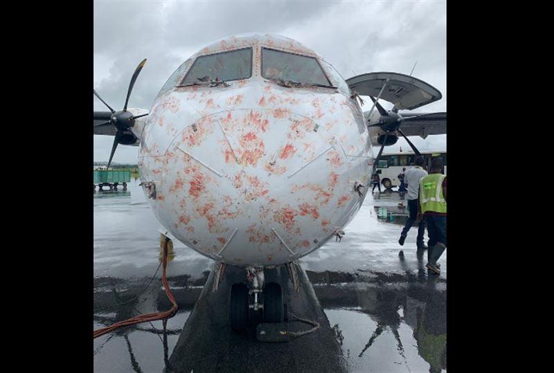 ФОТО: Самолет во время полета столкнулся со стаей птиц