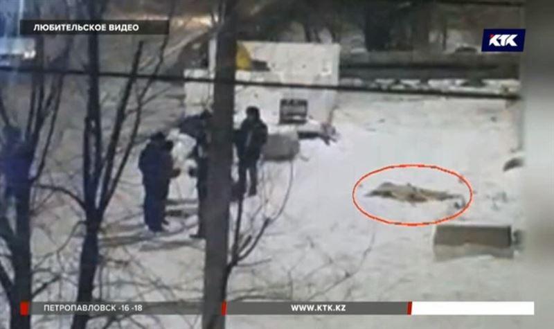 Избавиться от трупа женщины пытались двое экибастузцев