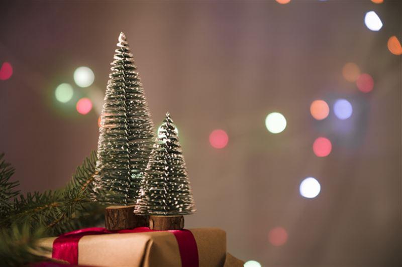 Какие подарки ждут под елкой казахстанцы?