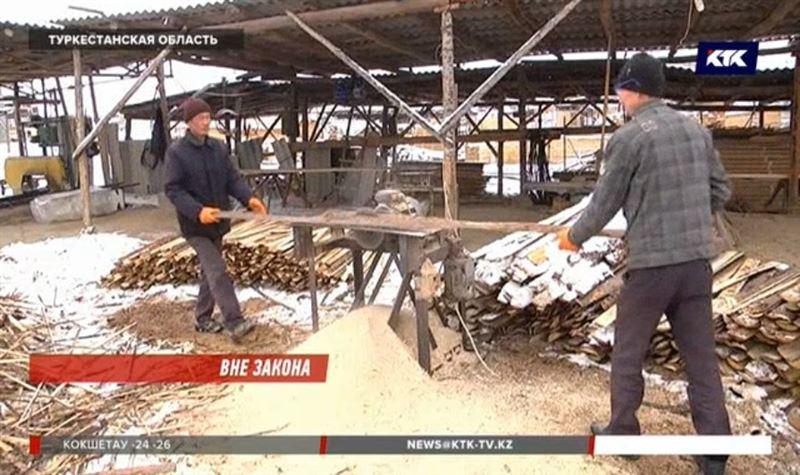 Владельцы пилорам в Сарыагаше останутся без земли