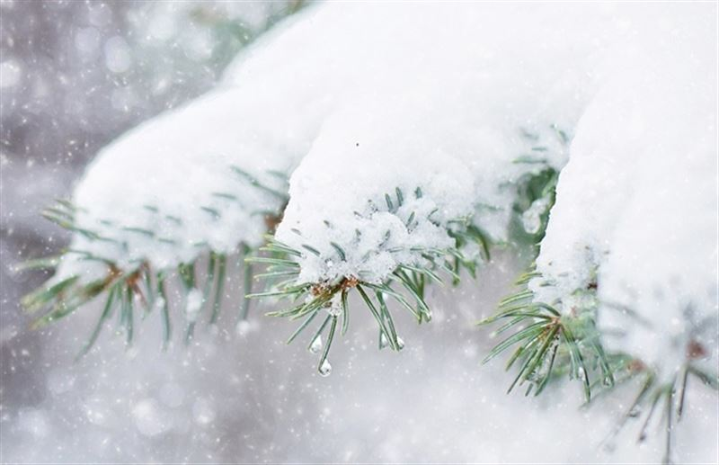 Прогноз погоды по Казахстану на пятницу, 28 декабря