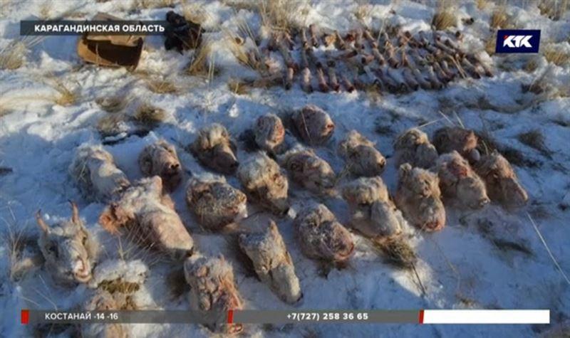 Браконьера в погонах разоблачили в Карагандинской области