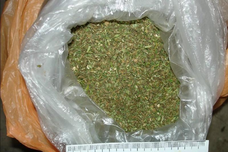 Жамбыл облысында бір адамнан 2 кг марихуана табылды