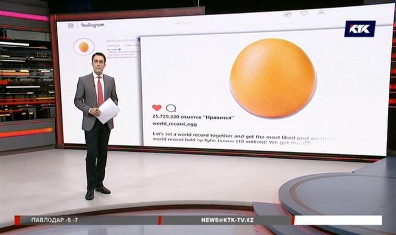 Яйцо побило знаменитостей: обычный снимок собрал 26 миллионов лайков