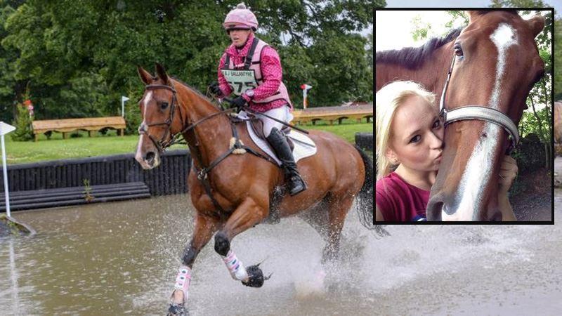 Сердечный приступ у лошади убил и животное, и наездницу