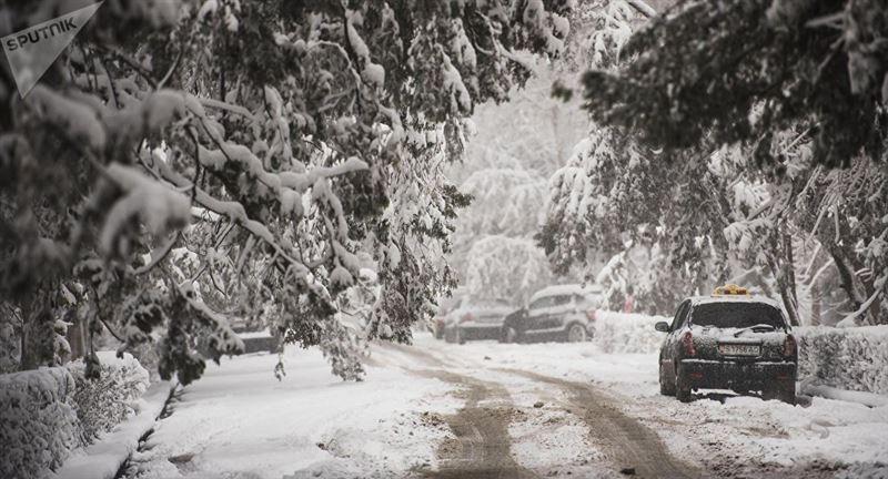 Прогноз погоды на 21 января: ожидаются осадки и ветер