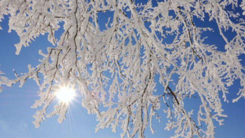 Какой будет погода в Казахстане 24 января