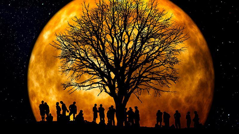 Ученые назвали прародительницу Луны источником появления жизни на Земле