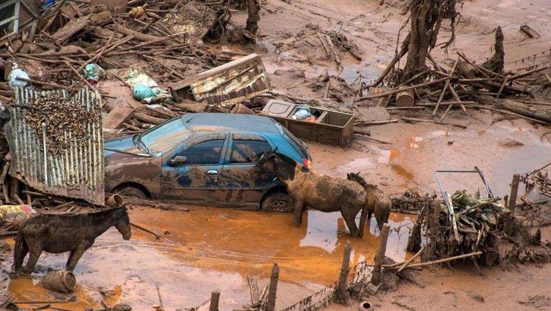 В результате прорыва дамбы в Бразилии погибли 50 человек