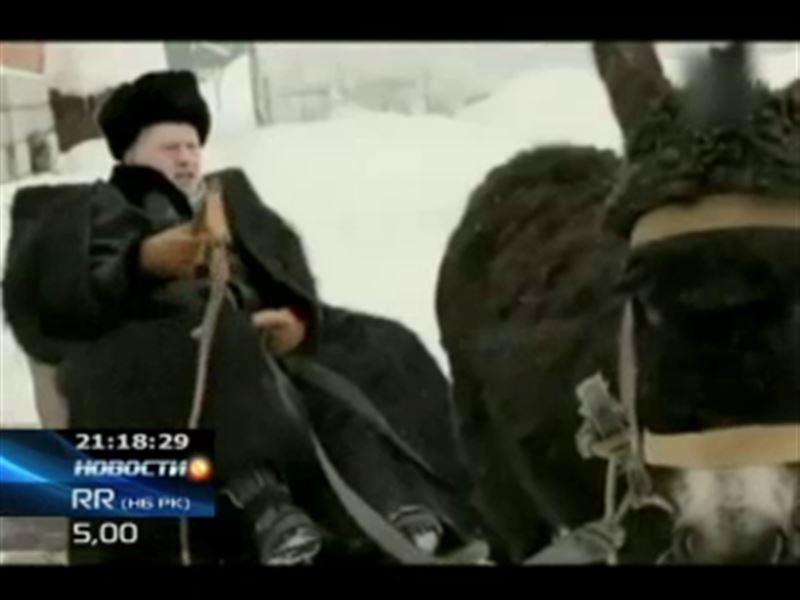 Предвыборный ролик Жириновского назвали негуманным