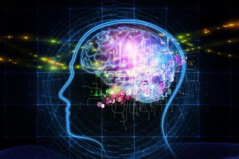 Ученые рассказали, как поддерживать мозговую активность в любом возрасте