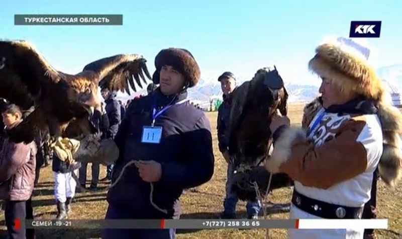 Оставить беркута с носом: на юге прошли соревнования птиц и собак