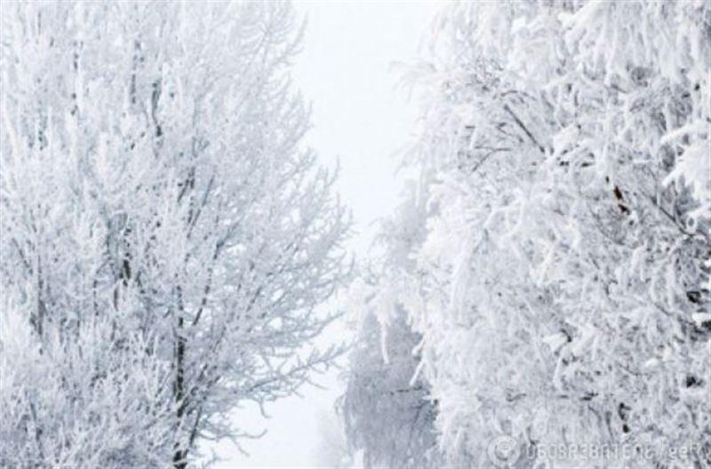 Какой будет погода в Казахстане 5 февраля