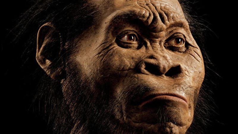 Антропологи рассказали, что могло повлиять на эволюцию человека