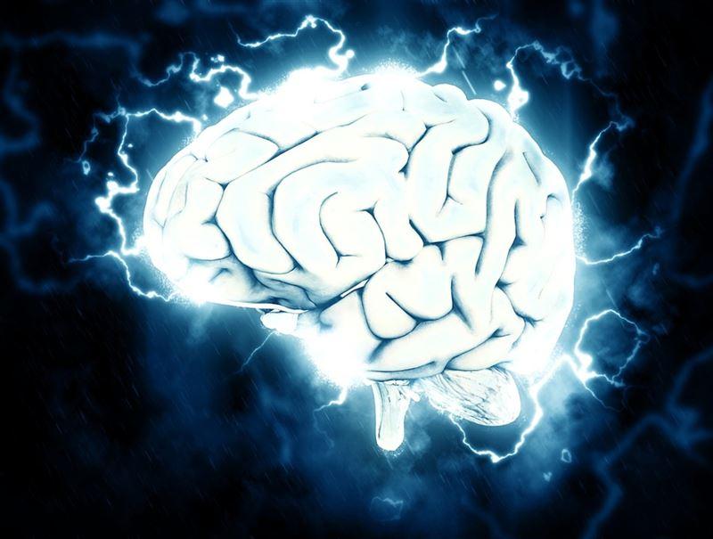 Ученые обнаружили различия в работе мозга «сов» и «жаворонков»